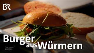 Download Burger ohne Fleisch: Eine umweltfreundliche Alternative zu Fleisch | Gut zu wissen | BR Video