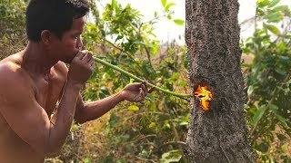 Download Primitive Culture: Nature Cut Tree Using Fish Oil and Tree Resin Video