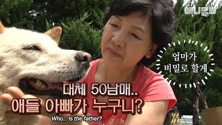 Download Mother dog that gave birth to 50 puppies doesn't tell who's the father LOL Video