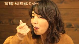 Download 磯山さやかの旬刊!いばらき『茨城県フラワーパーク』(平成28年12月23日放送) Video