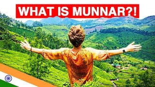Download WHAT IS MUNNAR?! | Exploring India's Emerald Tea Plantations Video