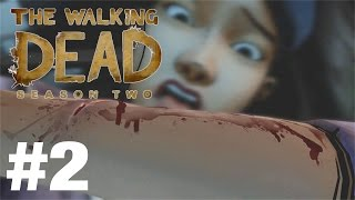 Download I NEARLY FAINTED | THE WALKING DEAD SEASON 2 #2 Video