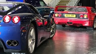 Download Surrounded By Rare Ferraris Video