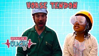 Download Science for Kids | Body Parts - Horse Tendon | Experiments for Kids | Operation Ouch Video