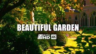 Download Beautiful Garden 4K/UHD | Ultra-HD | 4K Resolution | Digital Cinema | Demo | Panasonic Lumix DMC-GH4 Video