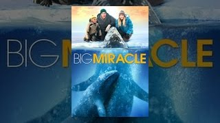 Download Big Miracle Video