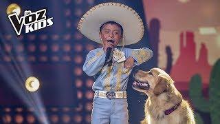 Download David Tarapues canta Corriente y Canelo - Rescates | La Voz Kids Colombia 2018 Video