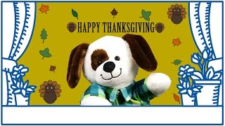 Download The 90th Macy's Thanksgiving Day Parade Video