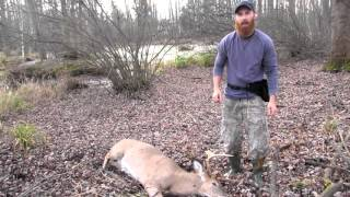 Download Bow Hunting Success! - 8-Point Buck Recovery and Processing 2015 Video