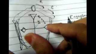 Download Mechanism of normal labor on dummy pelvis Video