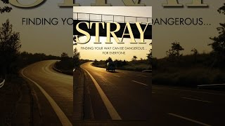 Download Stray Video
