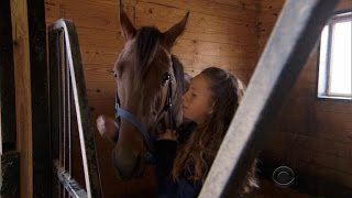 Download Pet horse becomes racing champion Video