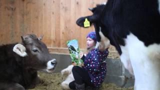 Download Wenn Menschenkinder mit Tierkindern ..... Video