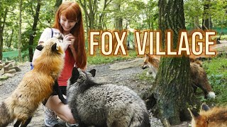 Download Fox Village in Zao Japan! 蔵王きつね村・kitsune mura Video