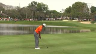Download Tiger Woods - 2013 Arnold Palmer Invitational (complete highlights) Video