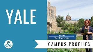 Download Yale University - Campus visit and overview by American College Strategies Video