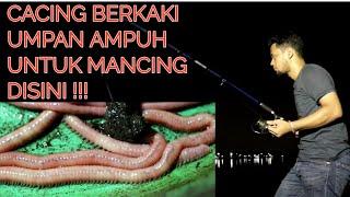 Download NEKAT MANCING IKAN DI SUNGAI BUAYA Video