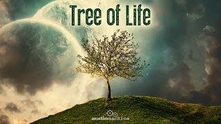 Download Audiomachine-Tree of Life: Full Album HQ Video