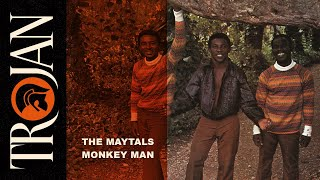 Download The Maytals 'Monkey Man' Video