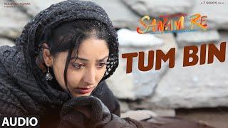 Download TUM BIN Full Song (AUDIO) | SANAM RE | Pulkit Samrat, Yami Gautam, Divya Khosla Kumar Video