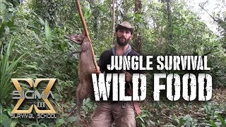 Download Living off the Jungle, Wild Foods Tour Video