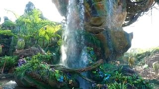Download First look at Disney World's Pandora - The World of Avatar | ABC News Video