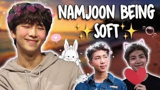 Download a video of namjoon being soft Video
