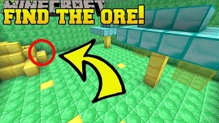 Download Minecraft: FIND THE ORE!!! - Custom Map Video