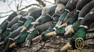 Download Frozen Sheetwater Duck Hunting: Hard Core Waterfowl TV Episode 4 Video