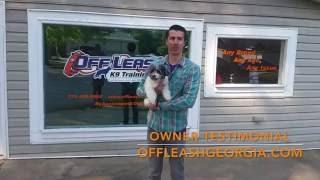 Download Owner Testimonial | Havapoo | Off Leash K9 Training, Georgia Video