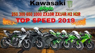 Download Kawasaki Ninja 250 300 650 1000 ZX10R ZX14R H2 H2R Top Speed 2019 Video