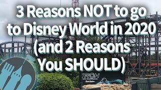 Download 3 Reasons NOT to go to Disney World in 2020, and 2 Reasons You SHOULD Video