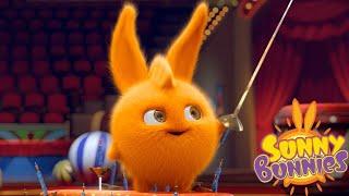 Download Cartoons for Children | Sunny Bunnies SUNNY BUNNIES THE SWORDSMAN | Funny Cartoons For Children Video