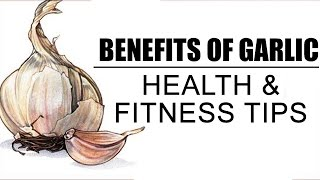 Download Health Benefits Of Garlic | Health And Fitness Tips Video