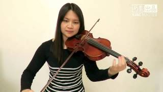 Download Sia - Angel By The Wings(Violin Cover) Video