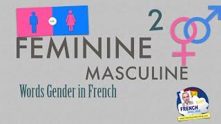 Download Gender of French Words: Feminine Video