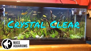 Download How to Keep CRYSTAL CLEAR water in your AQUARIUM/ Clean Fish Tank Water Video