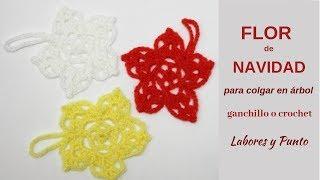 Download Como tejer flores de navidad (5 puntas) a ganchillo o crochet- Labores y Punto Video
