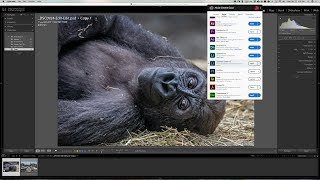 Download New Features of Lightroom Classic CC Video