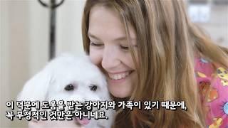 Download 도둑이 가족의 사랑하는 강아지를 훔쳤다. 그런데 그 강아지에 관한 엄청난 비밀이 밝혀지고, 도둑은 후회하게 된다./Ranking World Video