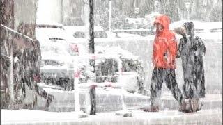 Download Il a neigé en Haute-Savoie, un phénomène rare Video