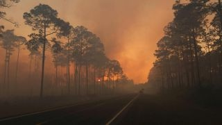 Download Wildfire rages along Florida-Georgia line Video
