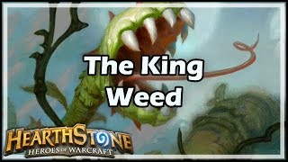 Download [Hearthstone] The King Weed Video