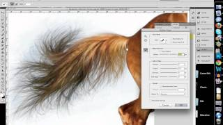 Download How to Quickly Select Images - Cut Out Detailed Images in Photoshop CS 5 Video