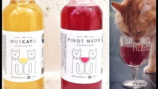 Download FABULOUS and Fun Products For the Wine Lover Video