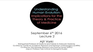 Download Understanding Human Evolution: Implications for the Theory and Practice of Medicine Video