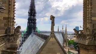 Download Notre Dame Pre Fire Including Inside Video Video