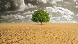 Download Desertification Video