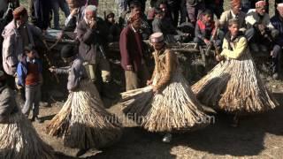 Download Strange tradition of men wear grass skirts and dance | Faguli Festival Video