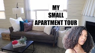 Download My Small Apartment Tour + Adulting 101! Video